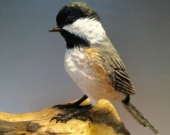 Black Capped Chickadee Woodcarving
