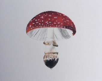 Amanita Muscaria Watercolor Print