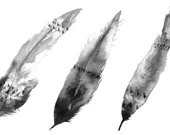 Navajo Inspired Feathers Illustration