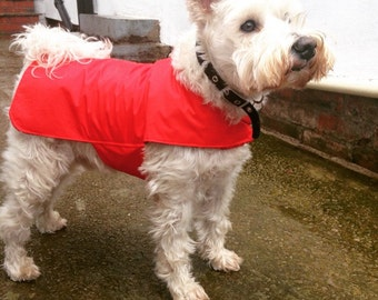 Waterproof dog coat.  Lightweight jacket.  Cotton lining.  Red dog coat.  Custom made. Showerproof dog. Machine washable material.