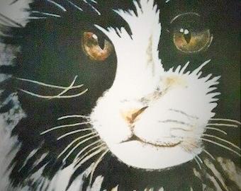 TUXEDO CAT PRINT