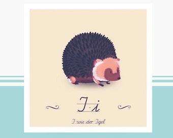Animal ABC - I like Hedgehog