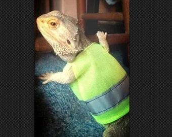 Reptile hi-vis