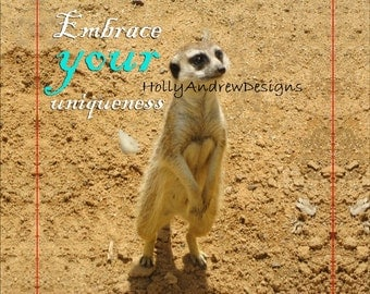 Embrace Your Uniqueness Meerkat