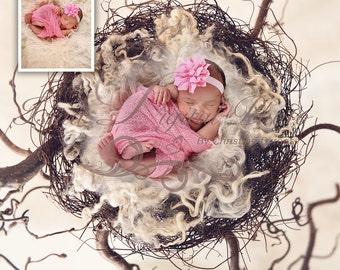 Instant download Prop Digital Newborn Photography studio ( Nest ) high resolution digital file