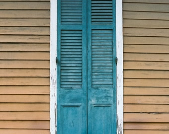 New Orleans French Quarter Door Teal and Brown