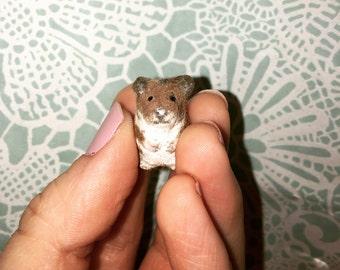 Hamster Furry Friend