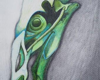 Bird Skull #1