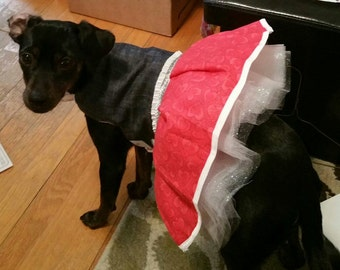 Medium dog dress