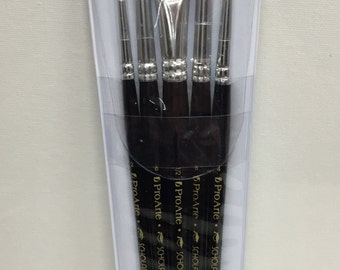 Brushes- pack of 5 Scholar brushes from Proarte