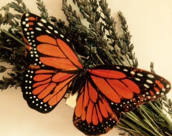 Orange Monarch Butterfly hair clip