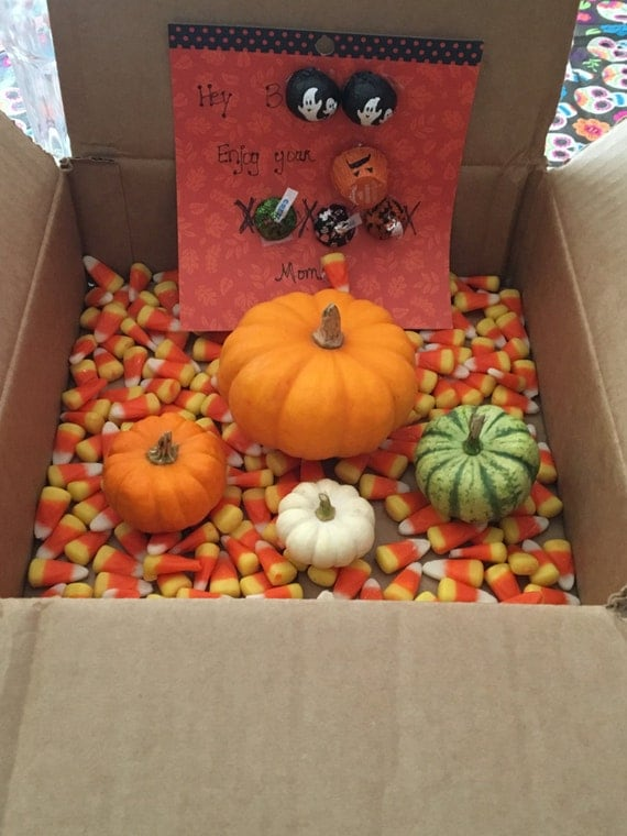 Pumpkin Grams