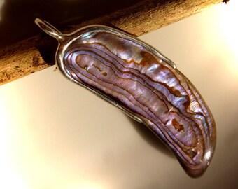 Pendant with 51 mm, abalone, Paua Shell, pendant, paua shell