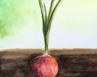 Garden Grown ~ Red Onion Watercolor
