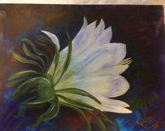 Desert Flower 9x12