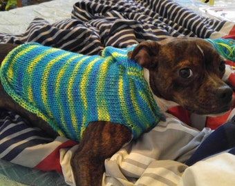 Homemade Medium knitted dog hoodie (model)