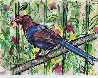 Sri Lankan Blue Magpie, Print