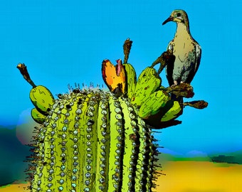 Mourning Dove and Cactus