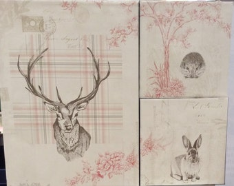 Set of 3 Woodland Creature Canvases