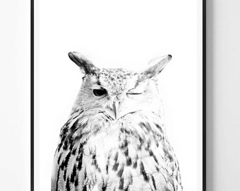Owl Print, Bird print, Owl art, Black and White Photography, Minimal photo, Minimalist, Nature Wall Art, Owl art, Scandinavian Printable Art