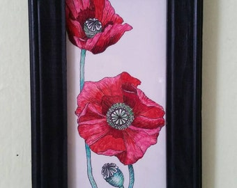 Poppies Pen and Ink Original Drawing