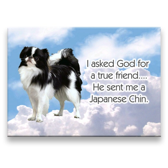 Japanese Chin True Friend Fridge Magnet