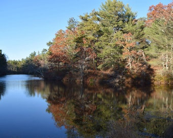 """Autumn Peace in Cranberry County 8""""x10"""" Print"""