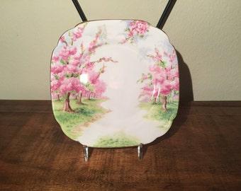 "Royal Albert ""Blossom Time"" Square Butter Plate"