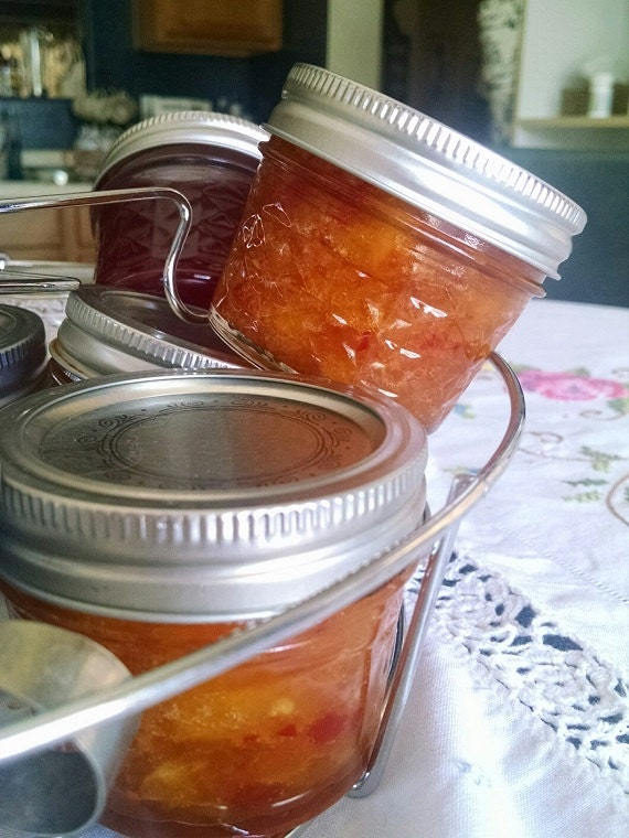 Kitty Pearl's Hot Apricot Jam