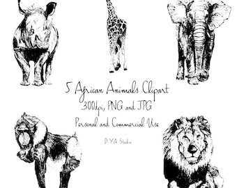 African Animals Clipart Black and white sketches Elephant giraffe rhino monkey lion commercial use instant download digital clipart