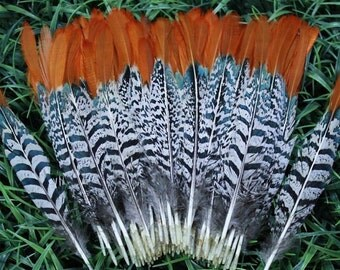 Wholesale Feathers, 100 Pieces ,Natural pheasant feather,accessories feathers,multicolor feather