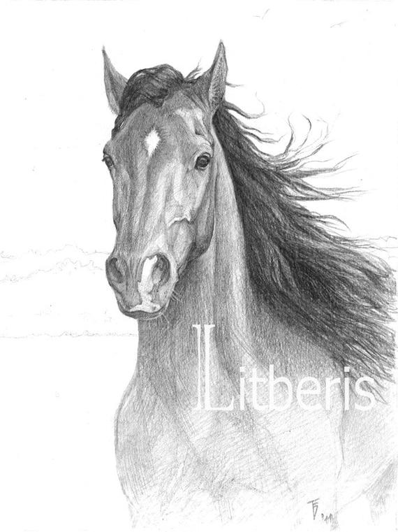 articoli simili a cavallo di disegno a matita matita On cavallo disegno a matita
