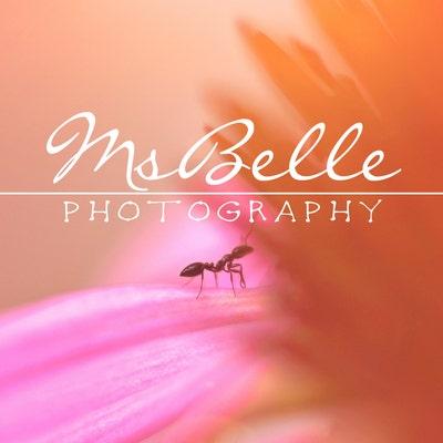 MsBellePhotography