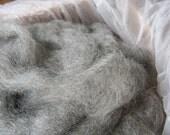 Gotland Wool Roving Fiber CSA Share