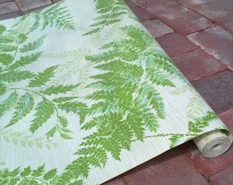 Vintage 1970s Wallpaper Ferns Fronds Botanical 4 YDS Shelf Paper 2016154