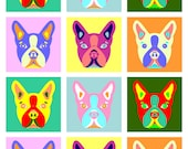 Boston Terrier Breed Colorful Modern Pop Art Style Colors Dog Pet Artwork Print