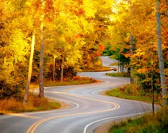 Fall in Love with Autumn - Wisconsin Landscape Photography - Fall Foliage - Beautiful Travel Photos - Winding Road, Roadtrip, Nature, Woods