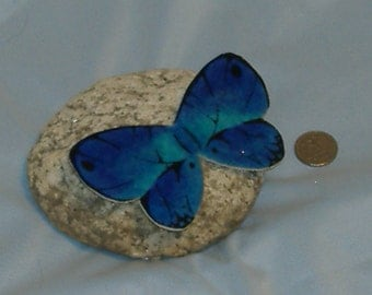 Butterfly rock paperweight