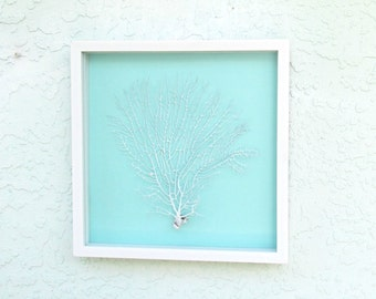 Sea Fan White, Aqua and White Shadow Box Frame, White Real Seafan in Frame, Framed Sea Fan, Framed Seafan, Coastal Wall Decor Beach