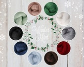 NEW Winter Mint Palette, Roving Packs, Wool Roving, Wool Roving for Felting for Spinning, Wool Roving for Sale, Needle Felting Supplies