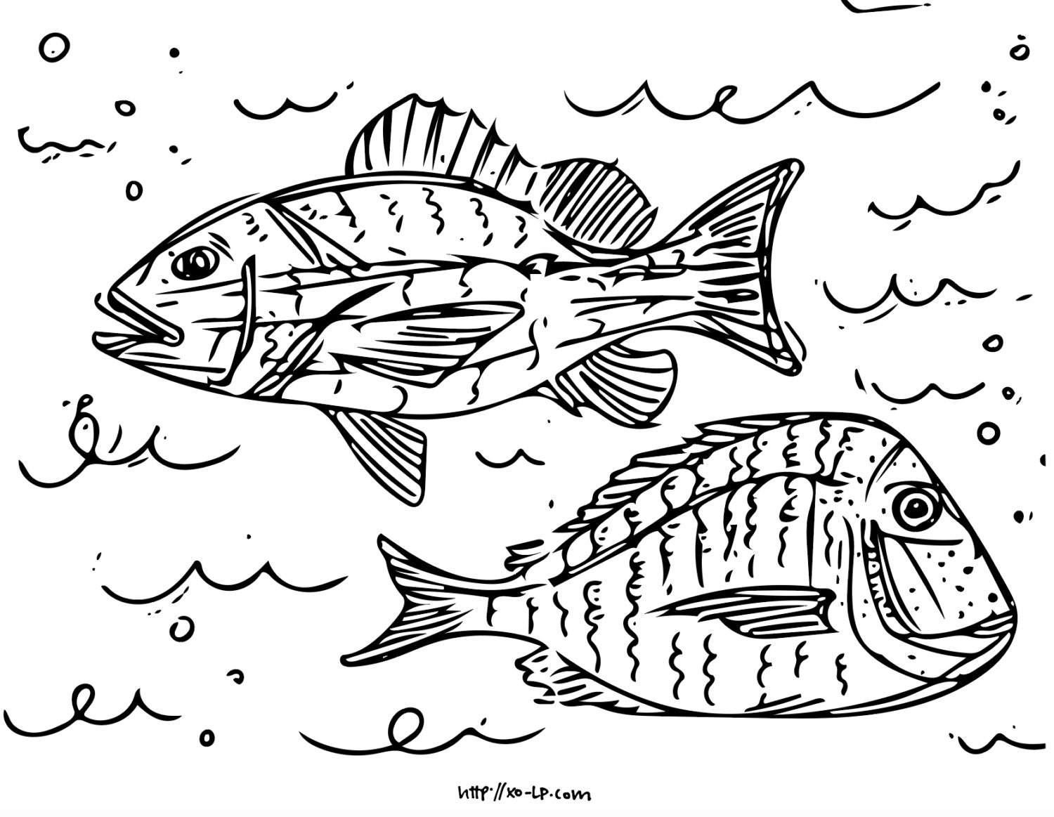 Printable Fish Coloring Pages 5 Pages Of Fish From The