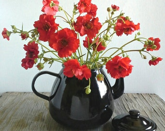 Black Enamelware Teapot Tea Kettle Pitcher Enamel Ware Metal Decorative Only