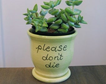SECONDS Ceramic Succulent Planter - Gag Gift - Please Don't Die Pottery Plant Pot with Drainage Tray