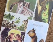 Chipmunks and Ground Squirrels Vintage Forest Animal Collage, Scrapbook and Planner Kit Number 2152