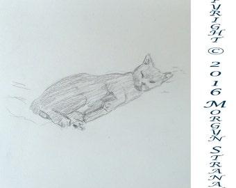 2016 Cat Series #2 (original OOAK drawing)