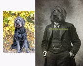 Pet Portrait, Custom Pet Art, Custom Pet Portrait, Custom Portrait, Pet Loss, Pet Memorial, Custom Fur Babies, Custom Dog Art, Custom Cat