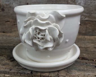White flower pot with rose