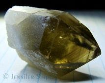 Large Raw Smoky Citrine Crystal Specimen: 215 Ct. Genuine Natural Untreated, Unheated, Rare Phantom Yellow Lemon Quartz Record Keeper Point