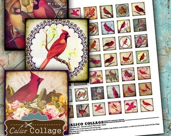 1x1 Inchies Collage Sheet - RED BIRD Collage Sheets - Cardinal Images - Vintage Bird Digital Sheet - Calico Collage - Instant Download