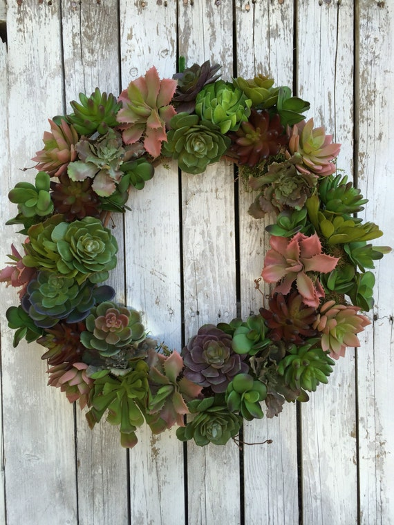 Succulent Wreath Living Wreath Artificial Succulent Wreath